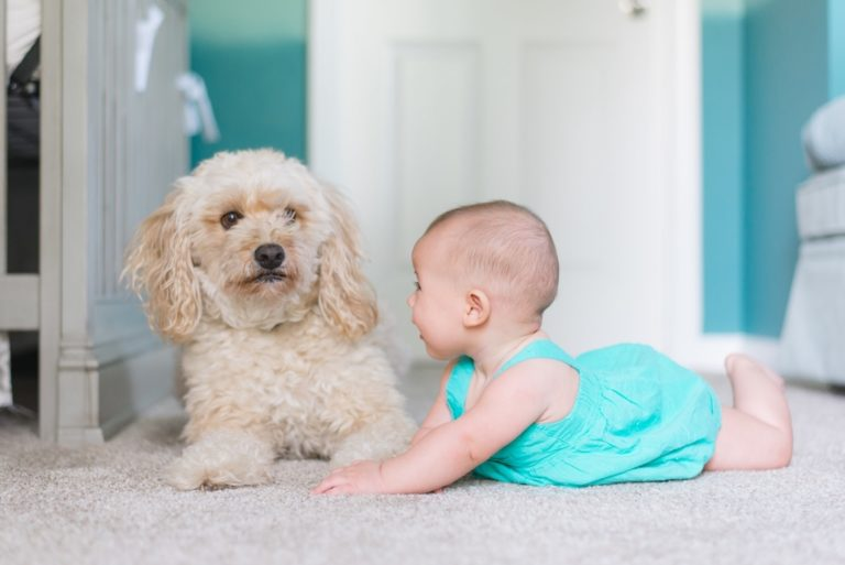 baby tummy time